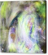 Smudge 211 Acrylic Print