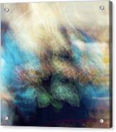 Smudge 244 Acrylic Print