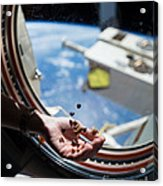 Snacking In Space Acrylic Print