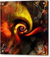 Snail 2 Acrylic Print by Terril Heilman