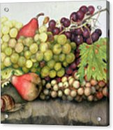 Snail With Grapes And Pears Acrylic Print