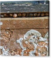 Snails At Home With Lichen Acrylic Print