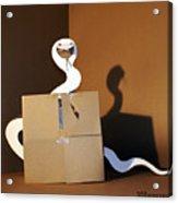 Snake 1 Acrylic Print