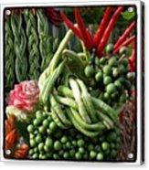 Snake Beans. At The Surin Elephant Acrylic Print