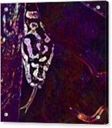 Snake Lurking Mouse Hunter  Acrylic Print