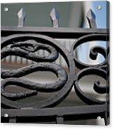 Snakes On A Gate Acrylic Print