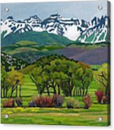 Sneffels Range Spring Acrylic Acrylic Print