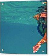Snorkeler 2 Acrylic Print by Bette Phelan