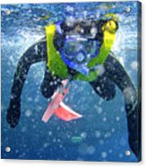 Snorkeling At The Great Barrier Reef Acrylic Print