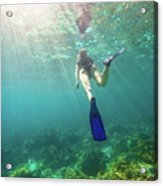 Snorkeling In Coral Reef Acrylic Print