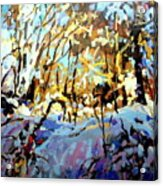 Snow Bank Acrylic Print
