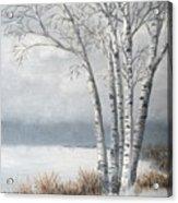 Snow Coming Into The South Shore  Acrylic Print