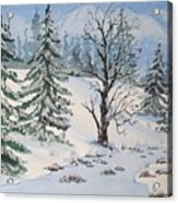 Snow Covered Acrylic Print