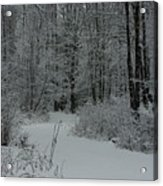 Snow Covered Path Into The Woods Acrylic Print
