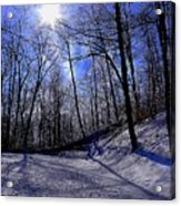 Snow Covered Path Acrylic Print