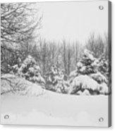 Snow Covered Wonderland Acrylic Print