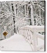 Snow Curve Acrylic Print