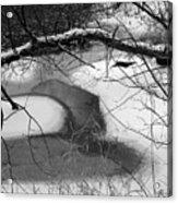 Snow Detail Acrylic Print