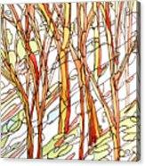 Snow Forest #1 Acrylic Print