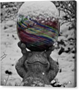 Snow Frog Acrylic Print