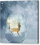 Snow Globe For Christmas With Reindeer Acrylic Print