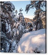 Snow In Saxon Switzerland Acrylic Print