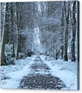 Snow In The Avenue Acrylic Print