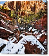 Snow In The Canyons Acrylic Print