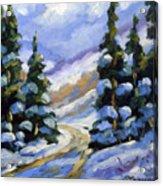 Snow Laden Pines Acrylic Print