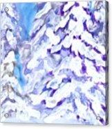 Snow Laden Trees Acrylic Print