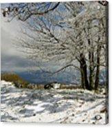 Snow On Beech Mountain  Acrylic Print