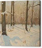 Snow On The Wood Acrylic Print