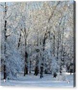 Snow Scene One Acrylic Print