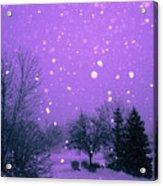 Snow Song Acrylic Print