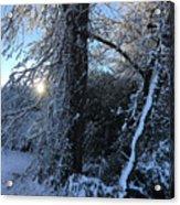 Snow Sunrise 2 Acrylic Print
