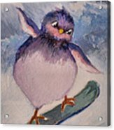 Snowboard Bird Acrylic Print by Diane Ursin