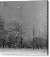 Snowfall At Night Acrylic Print