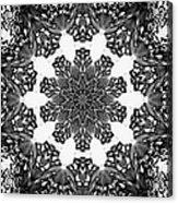 Snowflake 13 Acrylic Print
