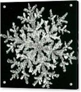 snowflake I Acrylic Print