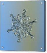 Snowflake Macro Photo - 13 February 2017 - 2 Acrylic Print