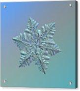 Snowflake Macro Photo - 13 February 2017 - 5 Alt Acrylic Print
