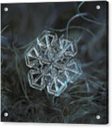 Snowflake Photo - Alcor Acrylic Print by Alexey Kljatov