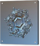 Snowflake Photo - Cold Metal Acrylic Print