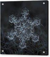 Snowflake Photo - Complicated Thing Acrylic Print