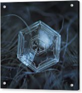 Snowflake Photo - Hex Appeal Acrylic Print