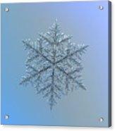 Snowflake Photo - Majestic Crystal Acrylic Print by Alexey Kljatov