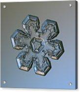 Snowflake Photo - Massive Silver Acrylic Print