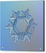 Snowflake Photo - Sunflower Acrylic Print