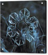 Snowflake Photo - The Core Acrylic Print