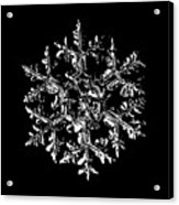 Snowflake Vector - Gardener's Dream Black Version Acrylic Print by Alexey Kljatov